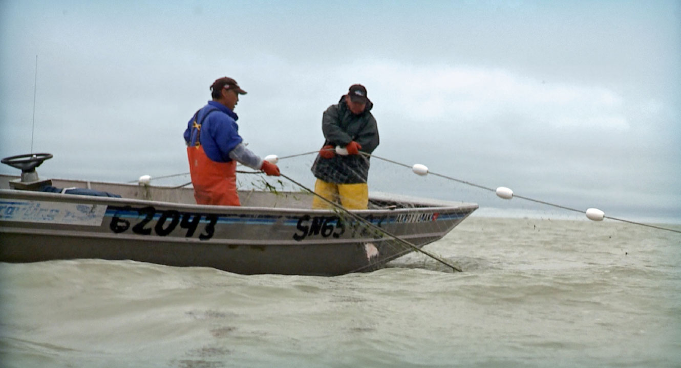 Learn More About Bristol Bay!