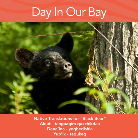 Word of the month:  Black Bear